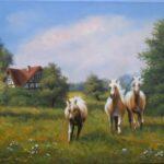 Pferde auf der Hausweide