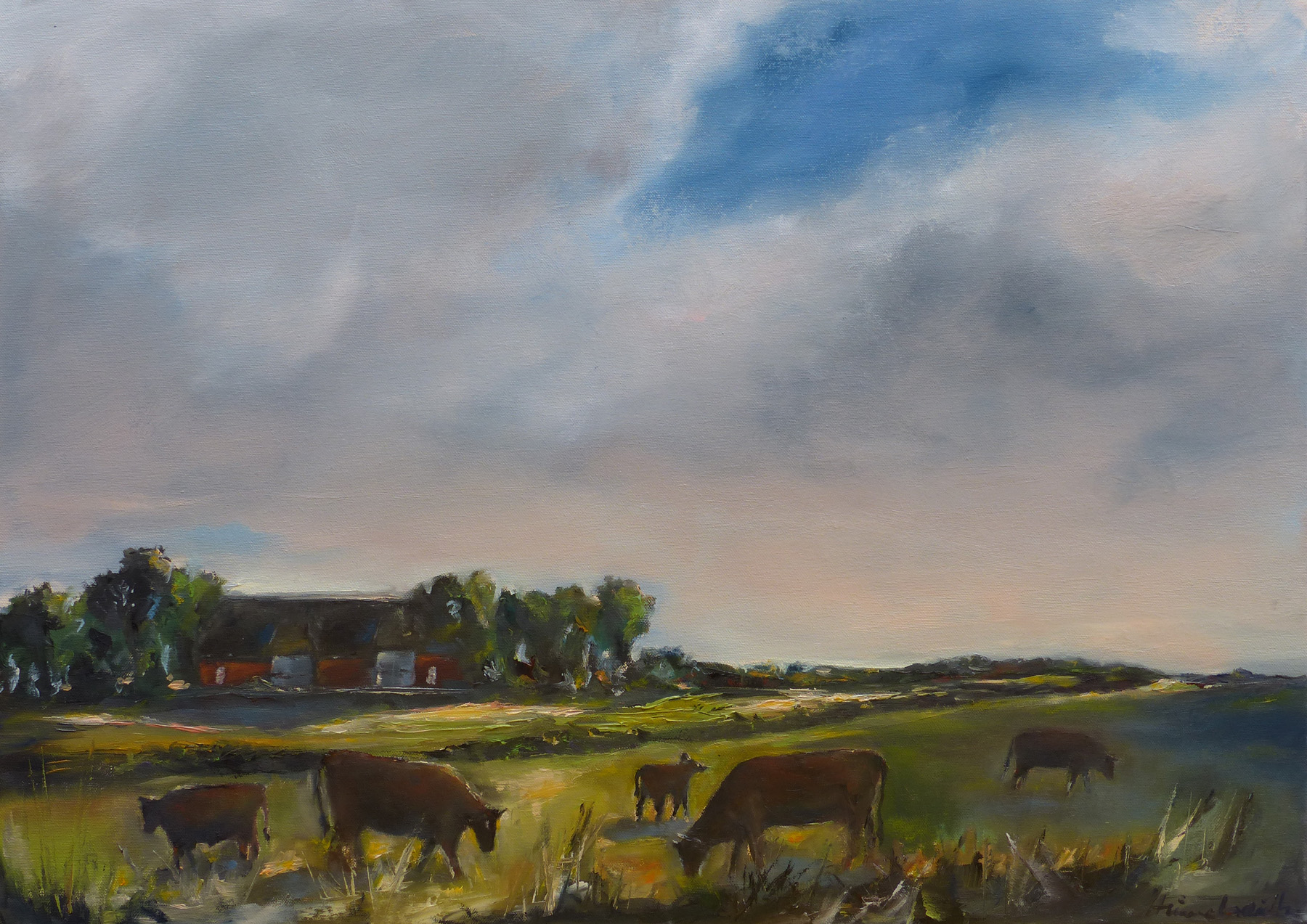 Sommertag Schleswig-Holstein Kühe